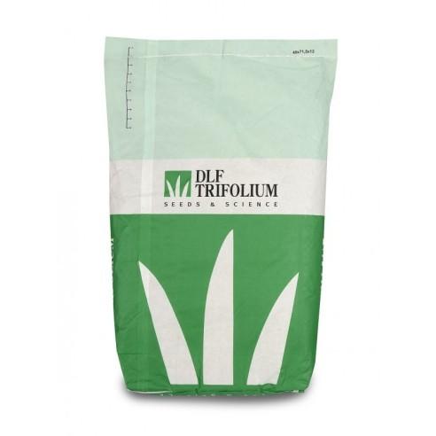 Dalle à gazon LSV Grass – Vente au m² soit 4 plaques